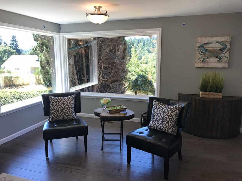Living-Room-Window